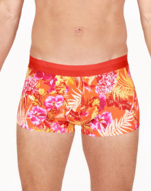 Boxer HOM Equatorial (Orange)